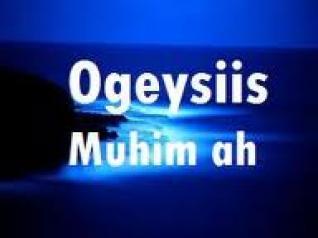 Ogaysiis Ogaysiis Ogaysiis Dhamaan Jalliyada Reer Puntland Ee Ku Nool Dalka Sweden